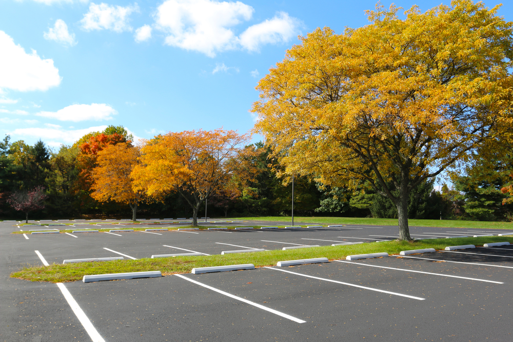 Parking-lot-with-trees